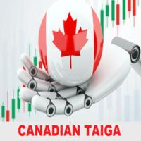 Canadian Taiga