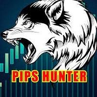 Pips Hunter EA