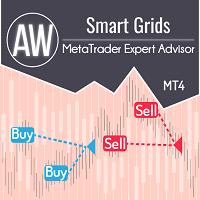 AW Smart Grids EA
