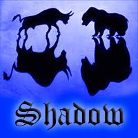 Shadow EA mt4