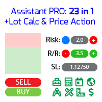Assistant 23 in 1 PRO