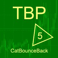 Cat bounce back MT5