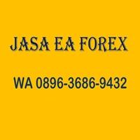 Jasa EA Forex