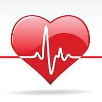 Heartbeat MT5