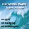 Growing Wave