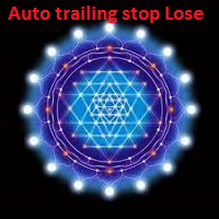 Auto Trailing Stop Loss