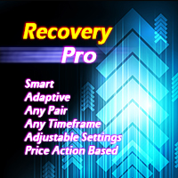 Recovery Pro
