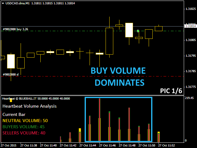 Better Volume Indicator On Forex Winner « Forex and Binary Robot