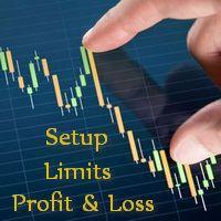 Auto Set Profit and Loss Limits