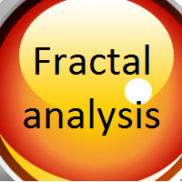 Fractal analysis