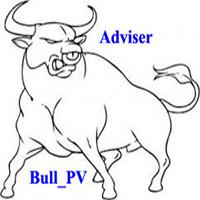 Bull PV