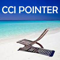CCI Pointer