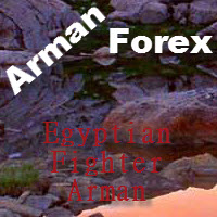 Egyptian Fighter Arman