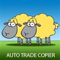 Utilitário de negociação Auto Trade Copier for MT5