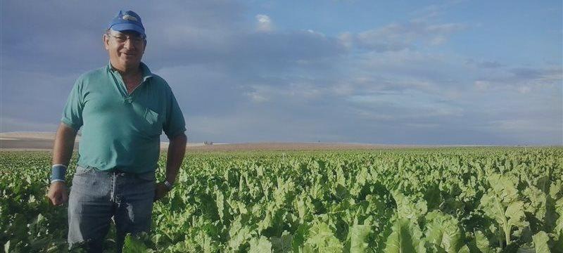 """""""Nós nos sentimos sem esperança"""": Agricultores espanhóis pedem outra resposta ao embargo russo"""