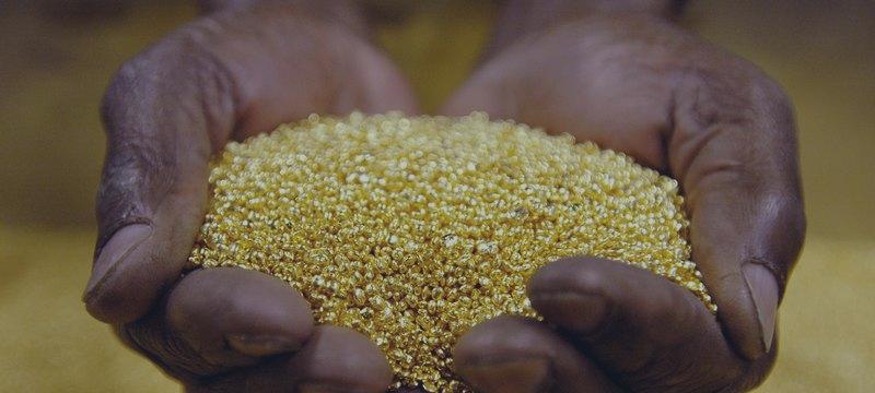 ¿Estará al alza el precio del oro en 2016?