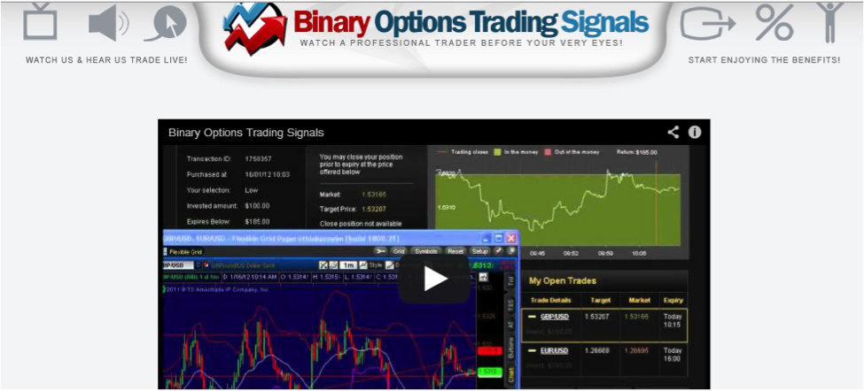 Binary trader biz 593 index
