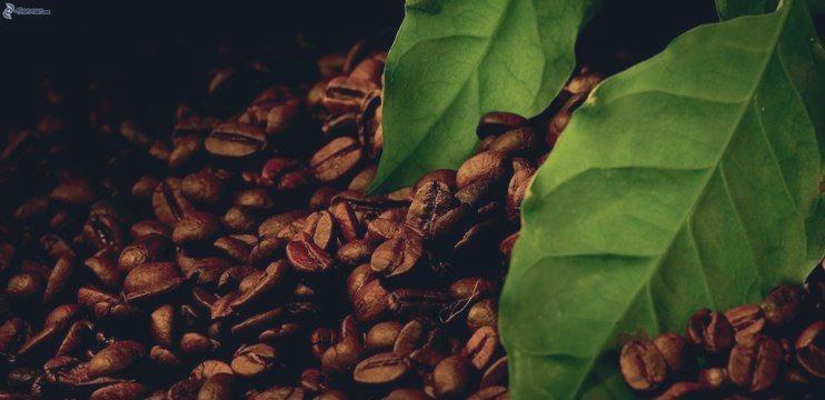 Café C Análisis Técnico y Pronóstico 20 Abril 2015