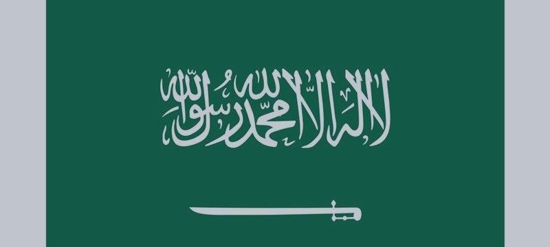 从王储到数位高级部长 沙特王室上演惊天剧变