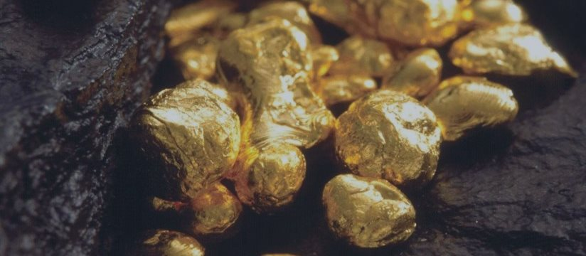 Впервые за 11 торговых дней золото начало расти