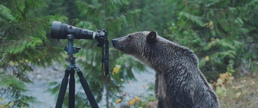 EURUSD. Вернется ли медвежий рынок?