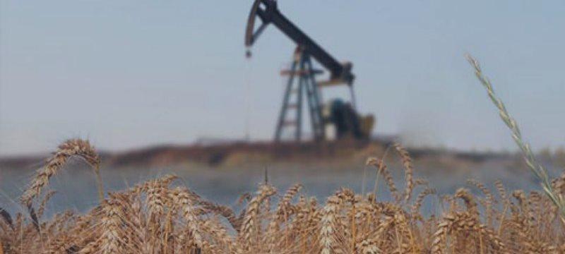 Россия в мае обогнала Саудовскую Аравию по добыче нефти