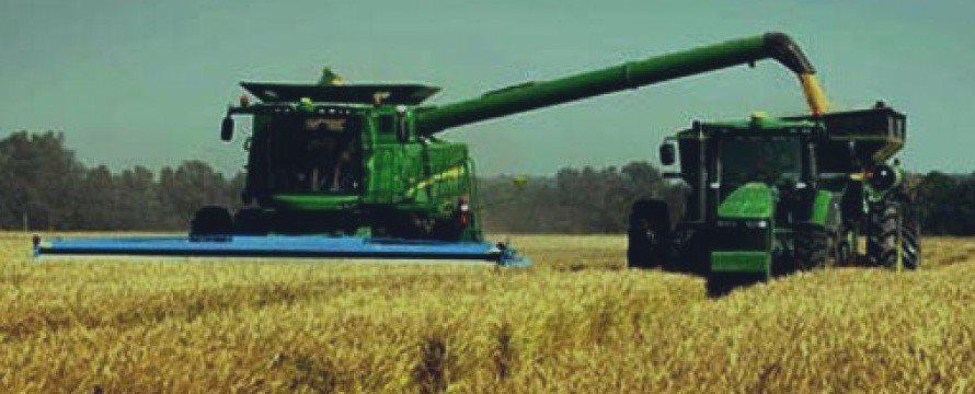 Россия станет крупнейшим в мире экспортером пшеницы, показал отчет Минисельхоза США, WASDE