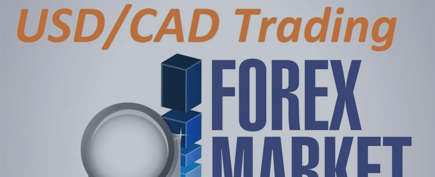 USD/CAD: the current interest rate of 0.5%