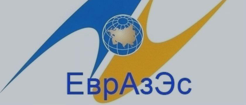 Песков: Таможенный кодекс ЕврАзЭС не имеет альтернативы, он вступит в силу