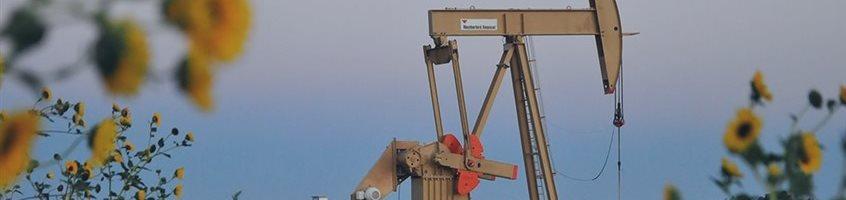 Нефть поднялась вверх после шести дней потерь