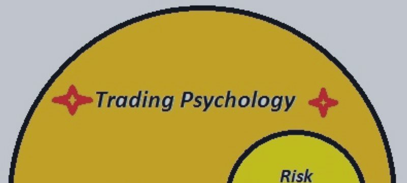 Path to successful trading