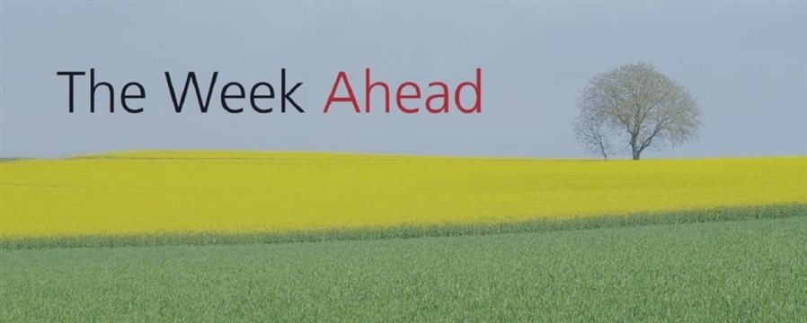 (04 JUNE 2017)The week ahead: UK election, ECB meeting