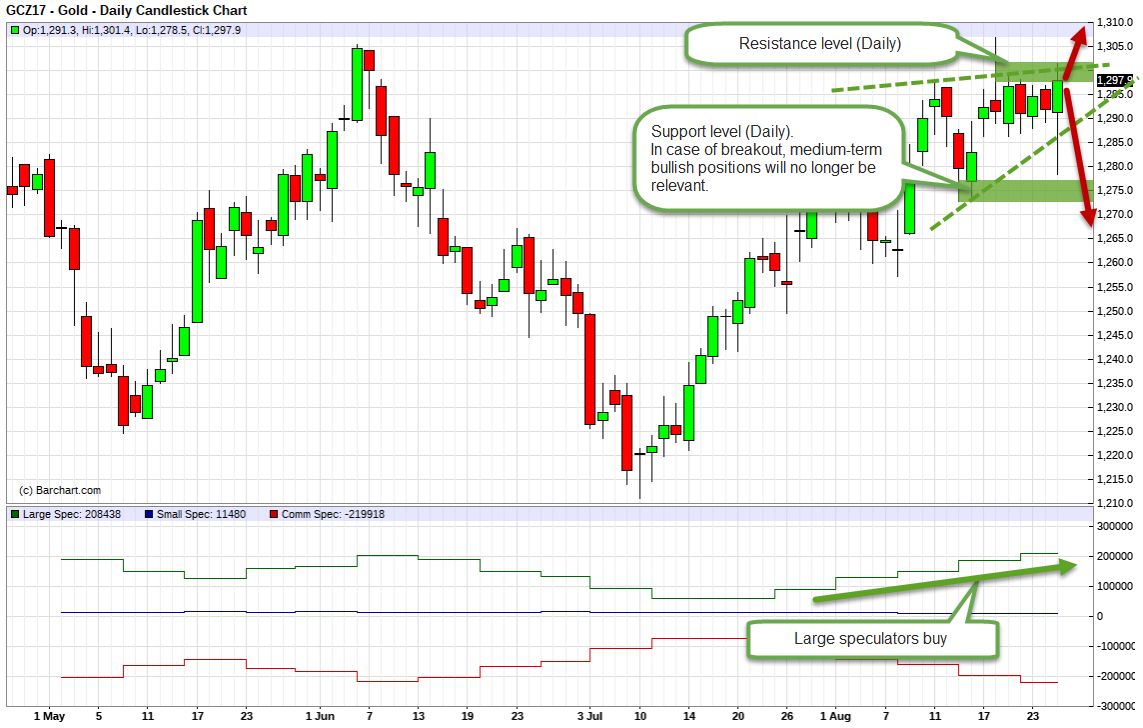 Gold. Technical analysis and COT net position indicator.