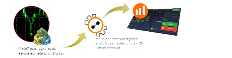 Automated trading on IQOption directly from MetaTrader