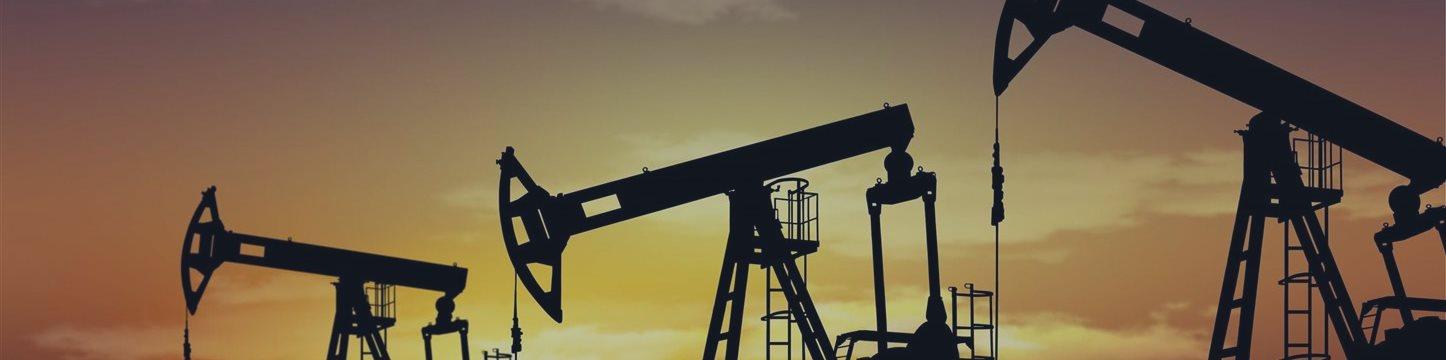 РАН прогнозирует постепенный рост цен на нефть до 2020 года