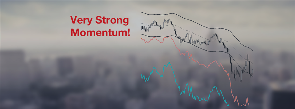 Professional Trading With Strong Momentum