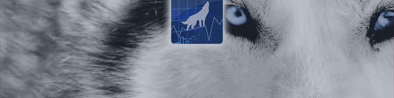 Wolfgrid EA - FAQ
