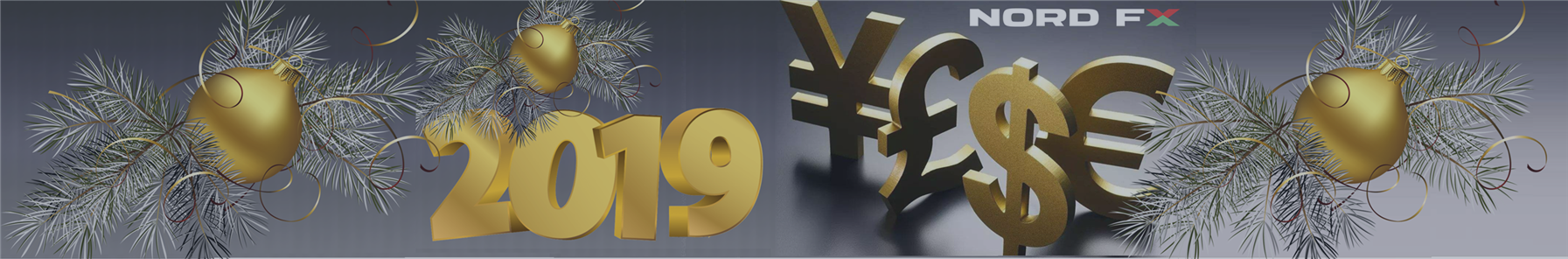 2018 Financial Results and 2019 Forex Forecast