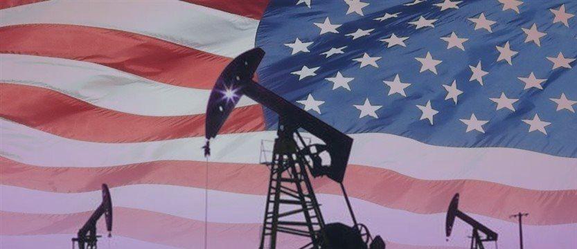 Oil reserves in the US increased last week: API