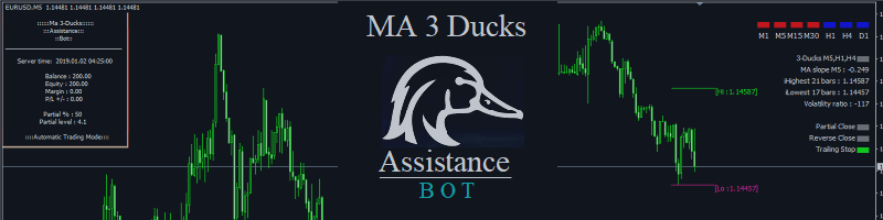 MA 3 Ducks Bot