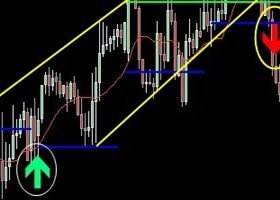 How good are you at risk control when trading forex?