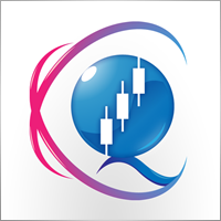 QUANTUM TRADING SOFTWARE LIMITED