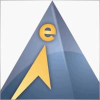 Elite E Services, Inc.