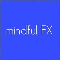 mindful FX UG (haftungsbeschraenkt)