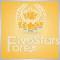 5Stars Forex