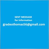 Thomas Gradeo