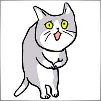 Yusuke.N