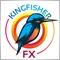Kingfisher.FX