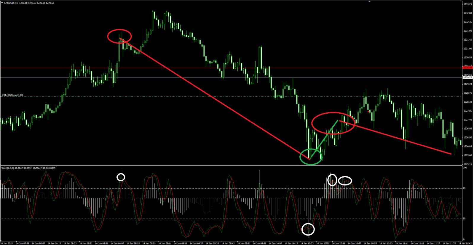 Forex-tsd signal bars v9