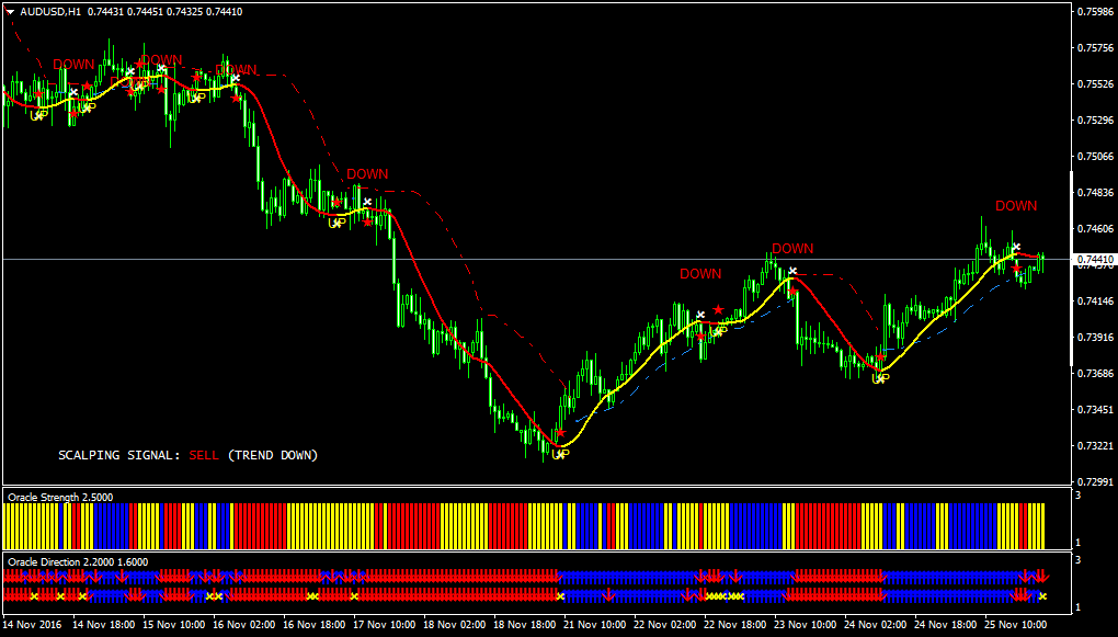 forex 100 pips daily scalper review of optometry